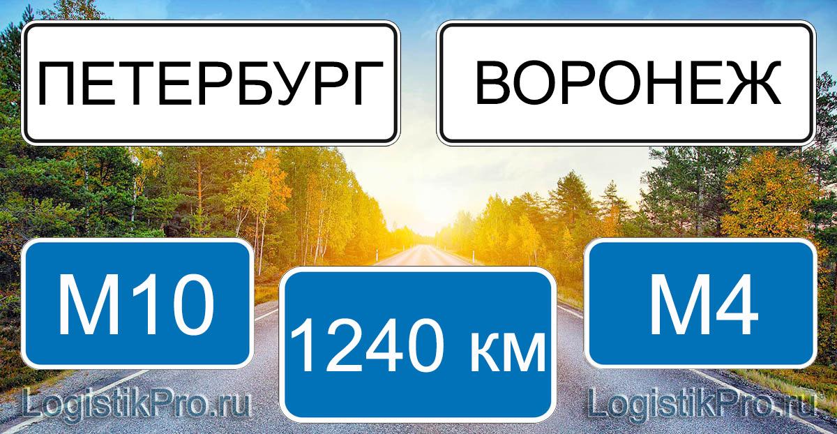 Расстояние между Санкт-Петербургом и Воронежем 1240 км на машине по трассе М10 М4