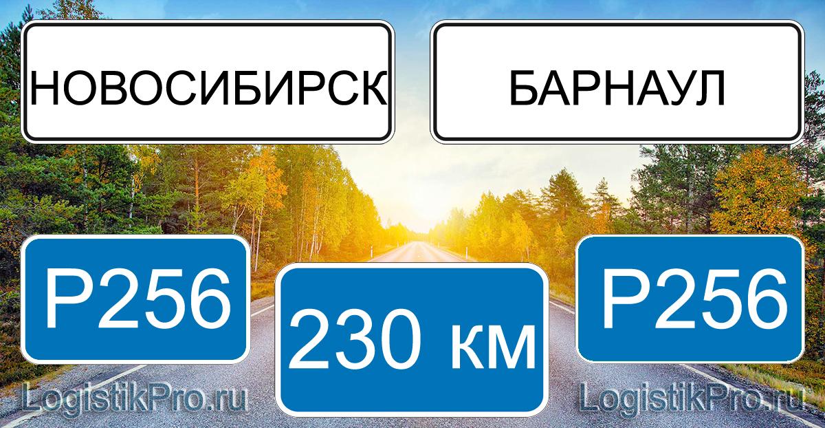 Расстояние между Новосибирском и Барнаулом 230 км на машине по трассе Р256